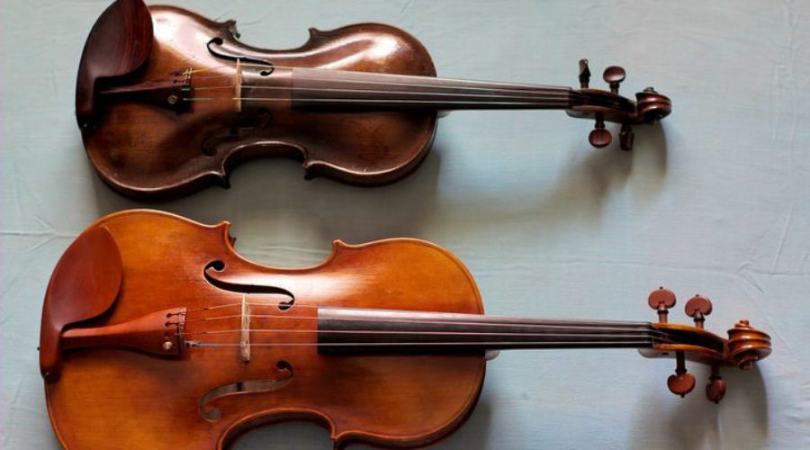 The Violin vs. the Viola