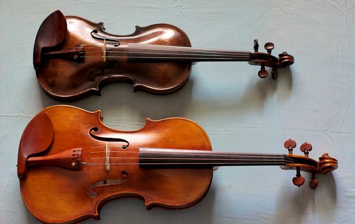 Viola Facts For Kids