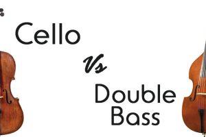 The Cello vs. the Double Bass