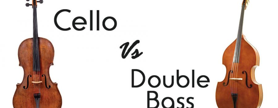 The Cello vs. the Double Bass