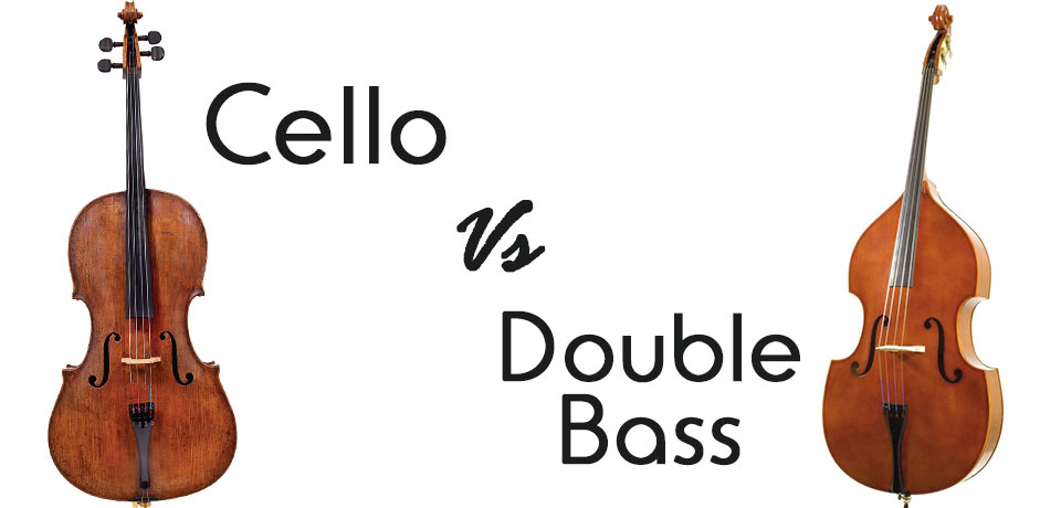The Cello Vs The Double Bass All Shore Orchestra